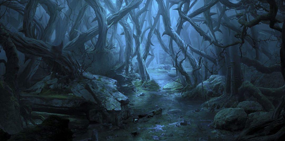 La forêt de ronces